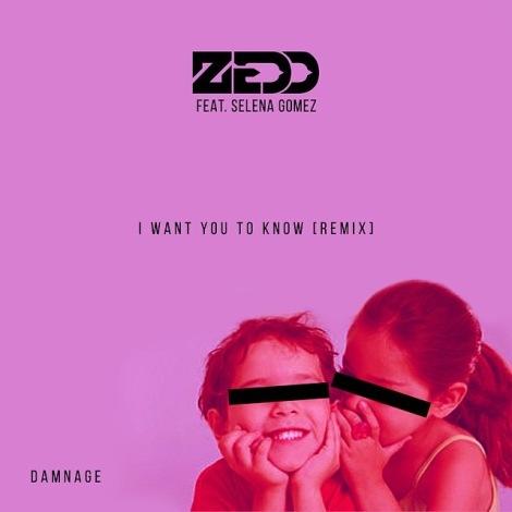 DJ Damnage I want you to know damnage remix